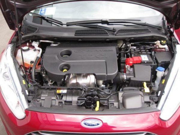 problemi dei motori benzina, gpl e diesel montati su Ford Fiesta 6 VI
